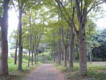 in VILLAGE house スタッフブログ-公園