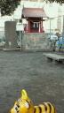 in VILLAGE house スタッフブログ-2012013109120001.jpg